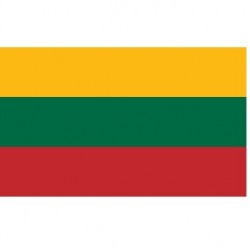 Vėliava Lietuvos 20 * 30cm